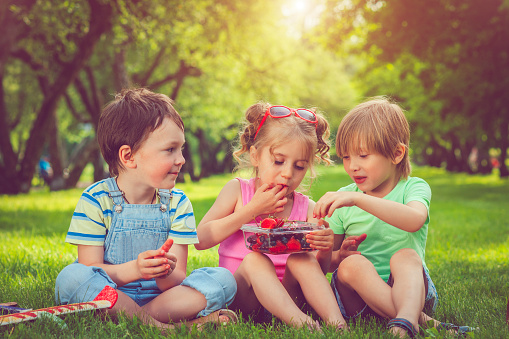 Picknick Kinder
